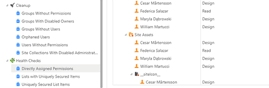 Detect and report on all users who have directly assigned permissions within the selected site collection(s).