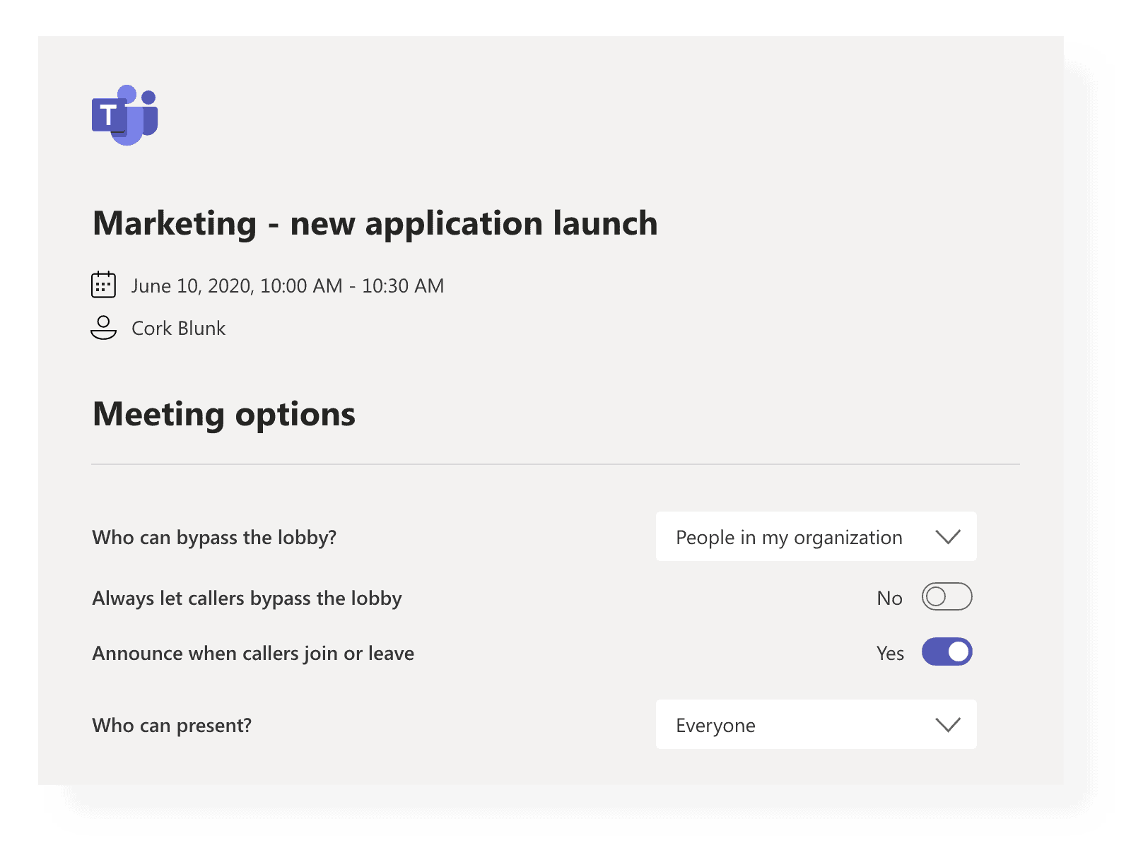 Microsoft Teams Meeting Options